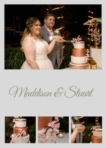 Bride & Groom Cutting Cake Thunderbird Park Mt Tambourine
